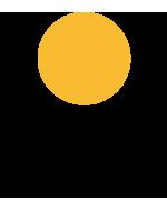 Logo Scene Diffusion